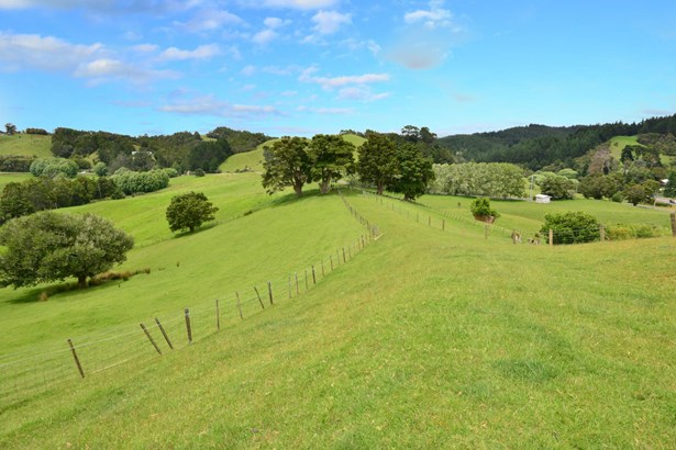 844 State Hwy 1, Pohuehue, Auckland - NZL (photo 4)