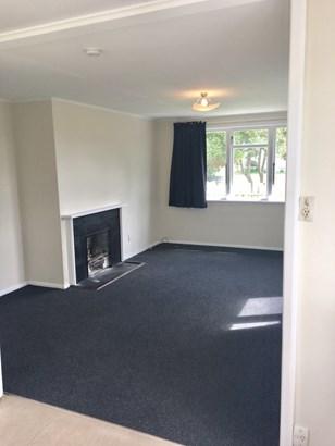 61 Te Puea Avenue, Meremere, Waikato District - NZL (photo 3)