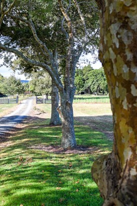 Lot 21/120 Monument Road, Clevedon, Auckland - NZL (photo 4)