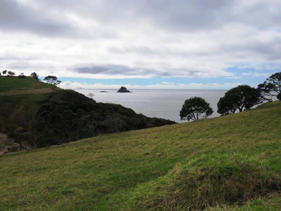 Taiharuru Road, Taiharuru, Northland - NZL (photo 2)