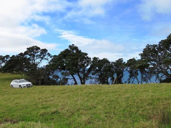 Taiharuru Road, Taiharuru, Northland - NZL (photo 3)
