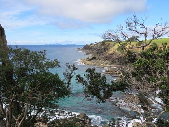 Taiharuru Road, Taiharuru, Northland - NZL (photo 5)