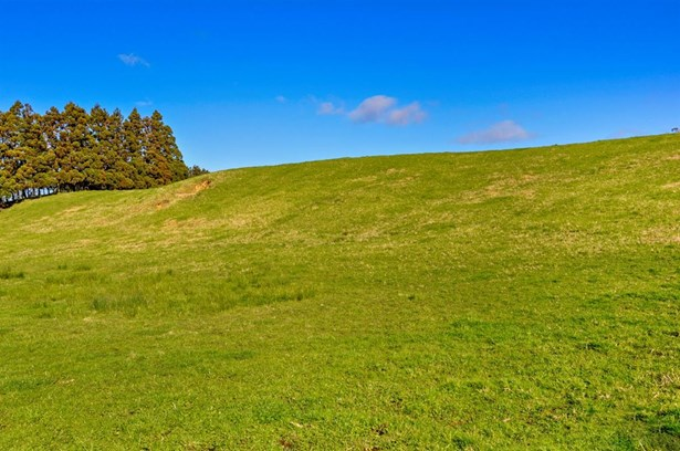 95 Twin Springs Drive, Woodhill, Auckland - NZL (photo 5)