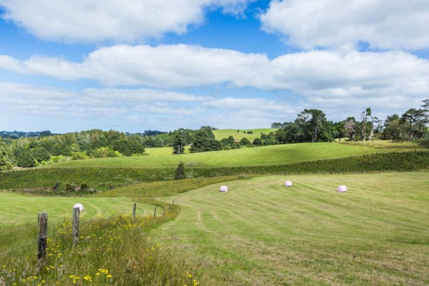 Lot 14 Runciman Road, Pukekohe East, Auckland - NZL (photo 2)
