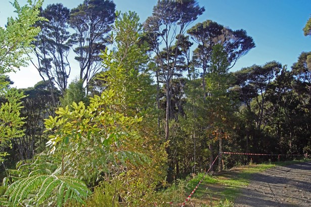 15 Hayes Road, Henderson Valley, Auckland - NZL (photo 3)
