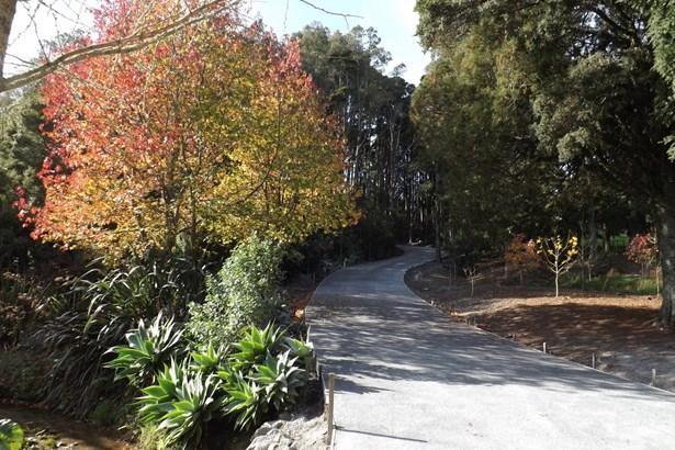 Lot 2 409 Vinegar Hill Road, Kauri, Northland - NZL (photo 3)