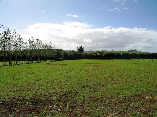 Lot 1 Buckville Road, Buckland, Auckland - NZL (photo 2)