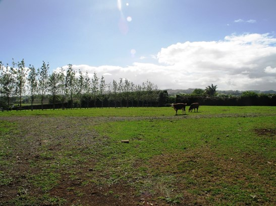 Lot 1 Buckville Road, Buckland, Auckland - NZL (photo 3)