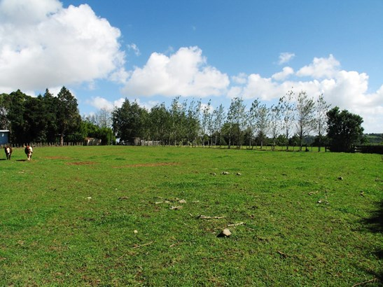 Lot 1 Buckville Road, Buckland, Auckland - NZL (photo 4)