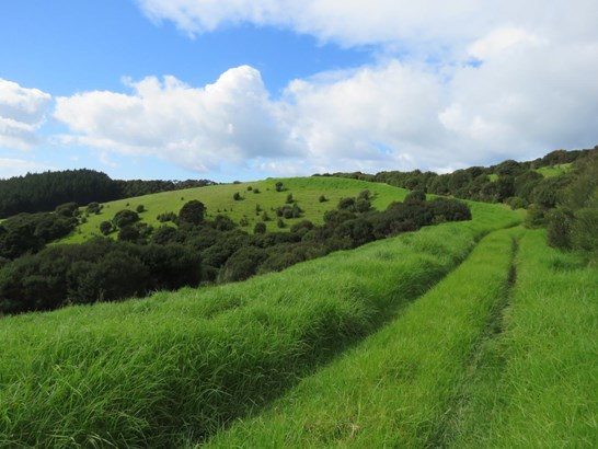 Clements Road, Matapouri, Northland - NZL (photo 1)