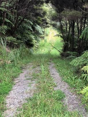 283 J Tolhopf Road, Ahuroa, Auckland - NZL (photo 2)