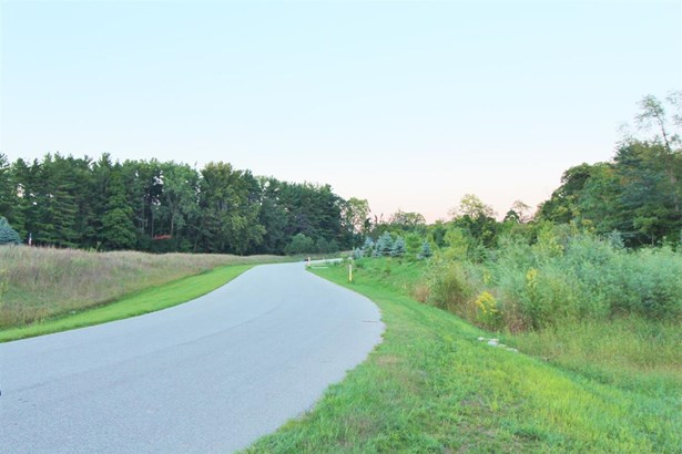 Residential Land - Huntertown, IN (photo 5)