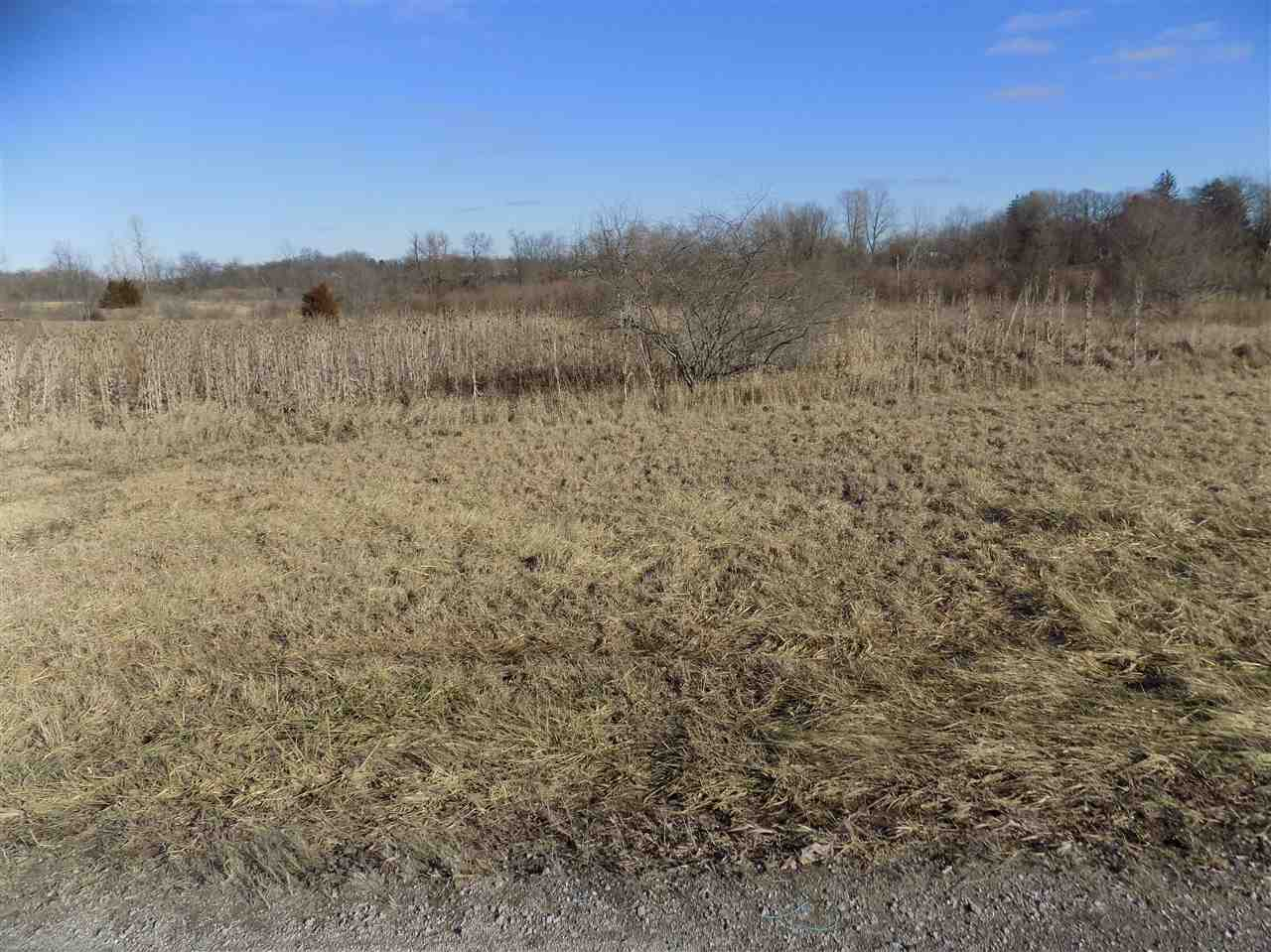 Residential Land - Corunna, IN (photo 1)