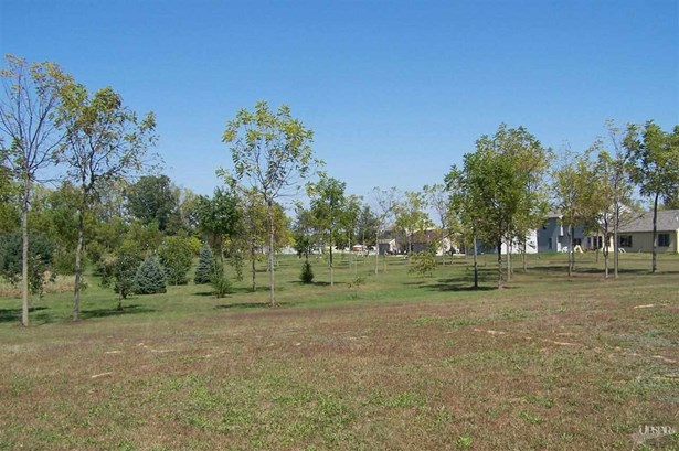 Residential Land - Fort Wayne, IN (photo 5)