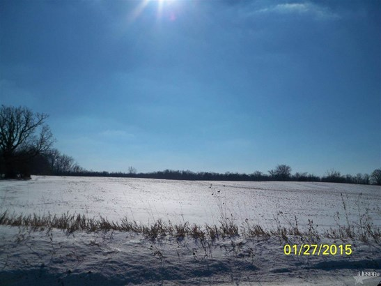 Agricultural Land - Huntertown, IN (photo 2)