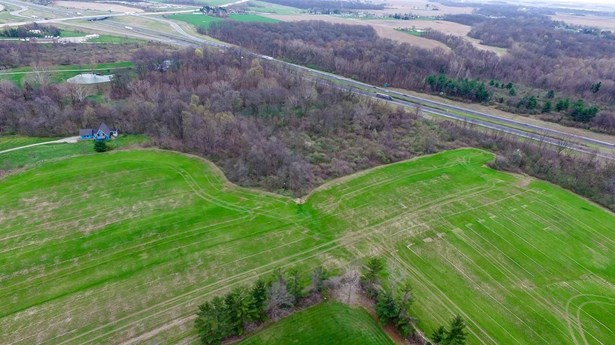 Agricultural Land - Roanoke, IN (photo 4)