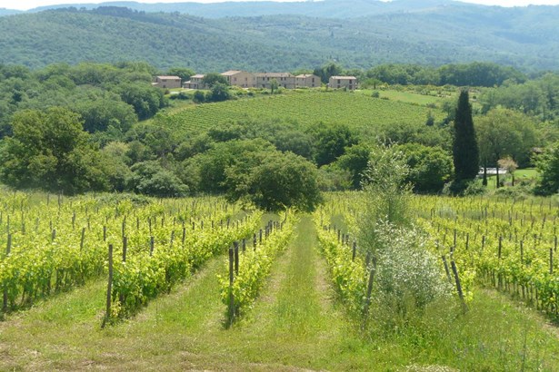 Chianti, Tuscany - ITA (photo 1)
