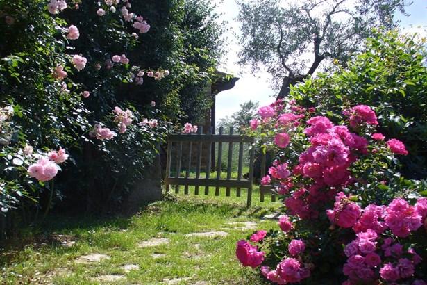 San Gimignano, Siena Tuscany - ITA (photo 3)