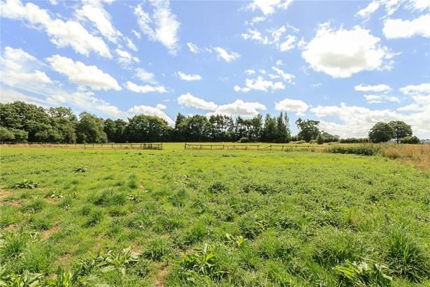 Oldwood Common, Tenbury Wells - GBR (photo 2)