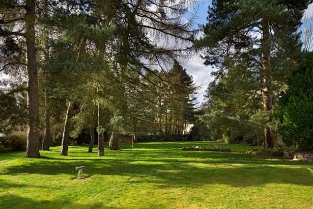 Frilford Heath, Abingdon - GBR (photo 4)