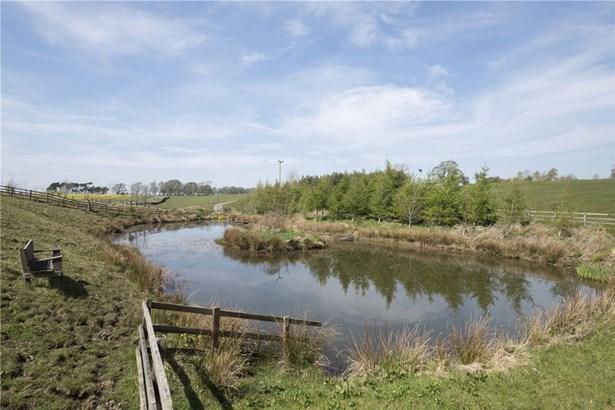 Birtley, Hexham - GBR (photo 5)