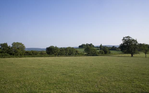 Rumwell Park, Taunton - GBR (photo 4)