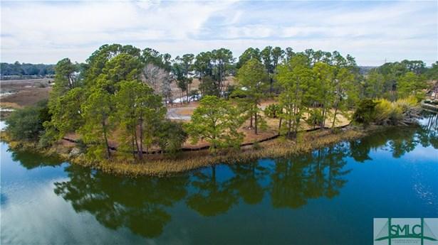 Land - Savannah, GA (photo 3)