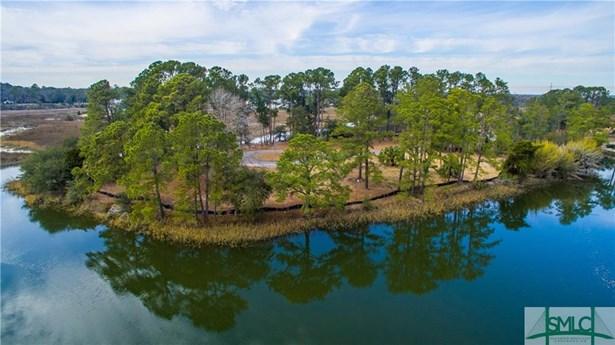 Land - Savannah, GA (photo 1)