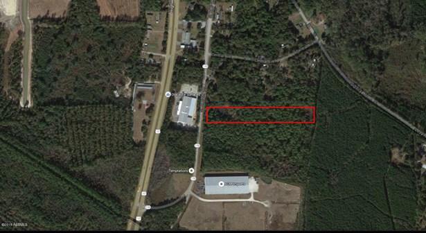 Acreage/Farm Plantation - Hardeeville, SC (photo 1)