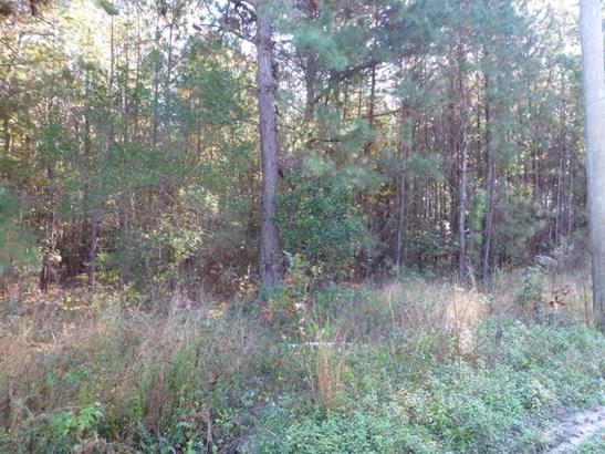 Acreage/Farm Plantation - Hardeeville, SC (photo 3)