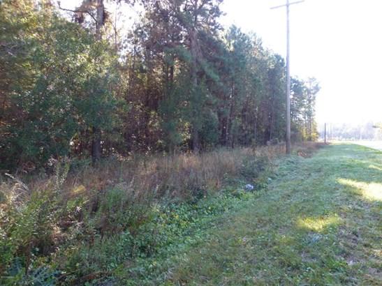 Acreage/Farm Plantation - Hardeeville, SC (photo 5)