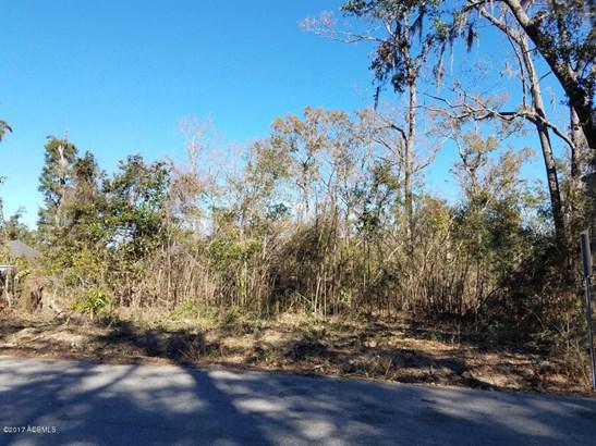 Resident S/D Lot - Hardeeville, SC (photo 3)