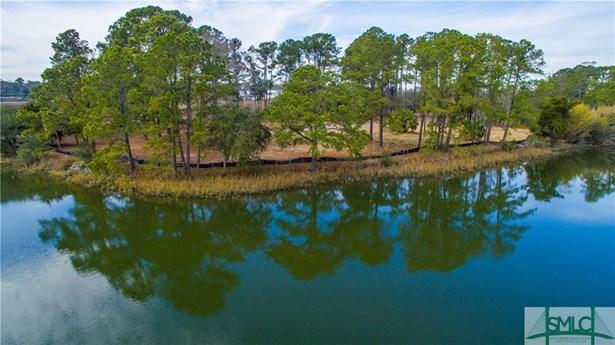 Land - Savannah, GA (photo 2)