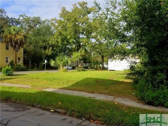 Land - Savannah, GA (photo 4)