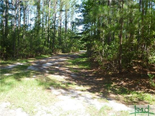 Land - Pembroke, GA (photo 3)