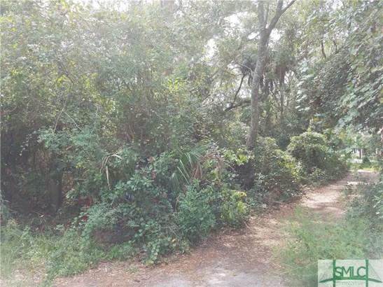 Land - Tybee Island, GA (photo 3)