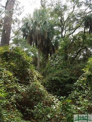 Land - Tybee Island, GA (photo 4)