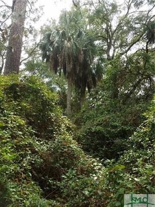 Land - Tybee Island, GA (photo 5)