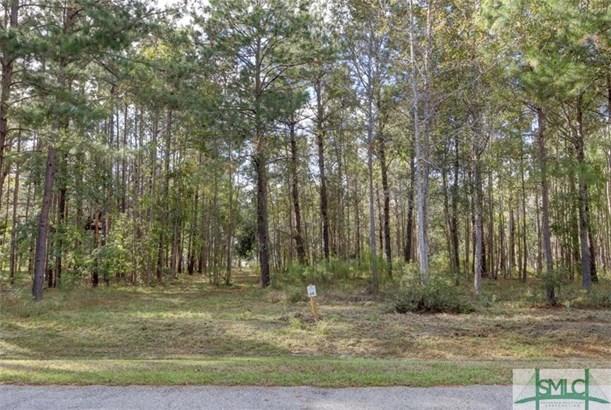 Land - Hardeeville, SC (photo 1)