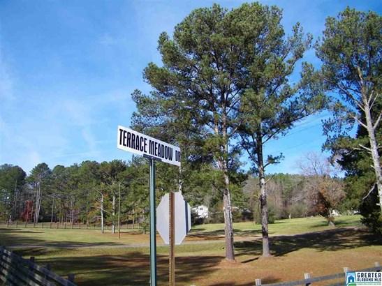 533 Terrace Meadow Dr 4 Acres, Wellington, AL - USA (photo 1)