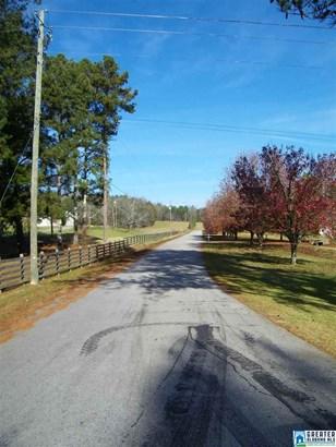 533 Terrace Meadow Dr 4 Acres, Wellington, AL - USA (photo 2)