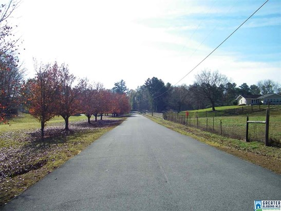 533 Terrace Meadow Dr 4 Acres, Wellington, AL - USA (photo 3)