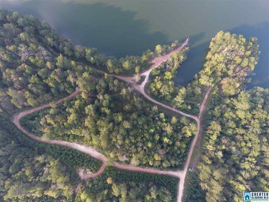 0 Bridge Creek Dr 30 Acres 2, Pell City, AL - USA (photo 2)