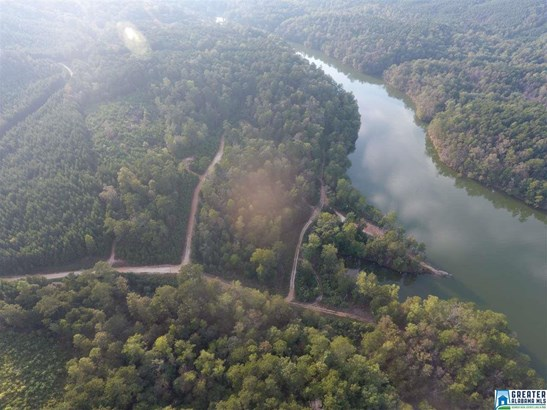 0 Bridge Creek Dr 30 Acres 2, Pell City, AL - USA (photo 5)