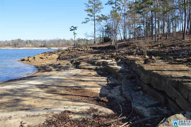 S Stoney Point Rd 138, Double Springs, AL - USA (photo 4)