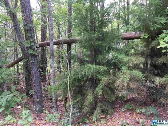 Lot 4 Overlook Rd Lot 4, Blountsville, AL - USA (photo 1)