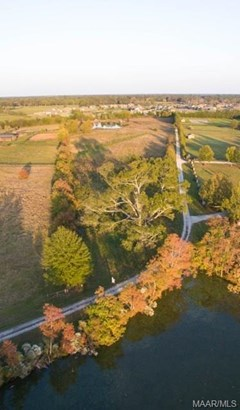 . Milly Branch Road, Pike Road, AL - USA (photo 1)