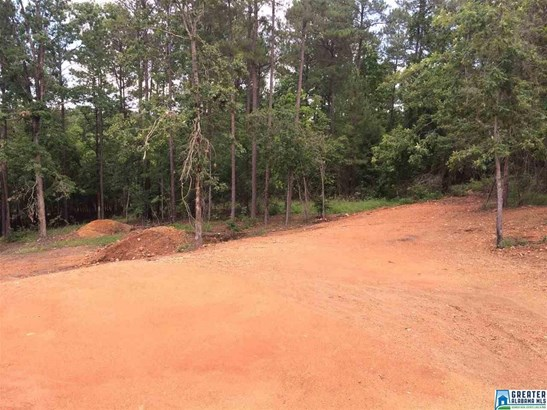 2015 Chelsea Ridge Dr, Columbiana, AL - USA (photo 4)