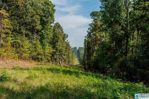 Old Hwy 280 172 Acres, Westover, AL - USA (photo 2)