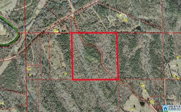 40 Acres Sitton Rd 40 Acres, Hayden, AL - USA (photo 1)